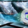Poštovani takmičari članovi kluba, obavještavamo vas da će treninzi u bazenu početi od srijede 04.09.2019. godine u našim standardnim terminima (srijeda i petak od 18:30h i nedjelja od 8 sati […]