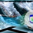 Dragi plivači i roditelji, uprava bazena nas je obavijestila da zbog težeg tehničkog kvara nažalost do daljnjeg nema treninga u bazenu. Do početka treninga u bazenu povečat ćemo broj kondicionih […]